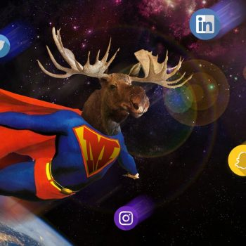 copywriter, copywriting, blog, blogging, freelance, freelancer, social media, online presence, supermoose, moose media management