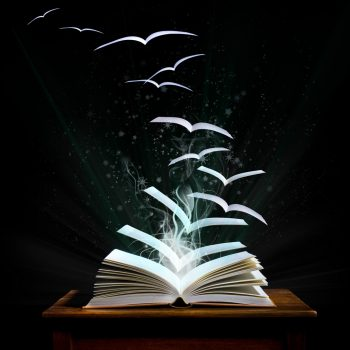 clients, idea, guidance, project, career, book, anthology, ghostwriting, training aid, training, manual, collection, publication, publish